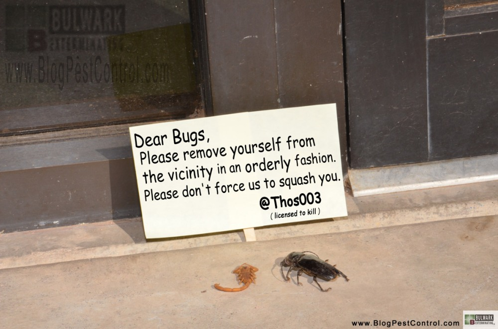 Holistic Pest Control - #Joke (1/2)